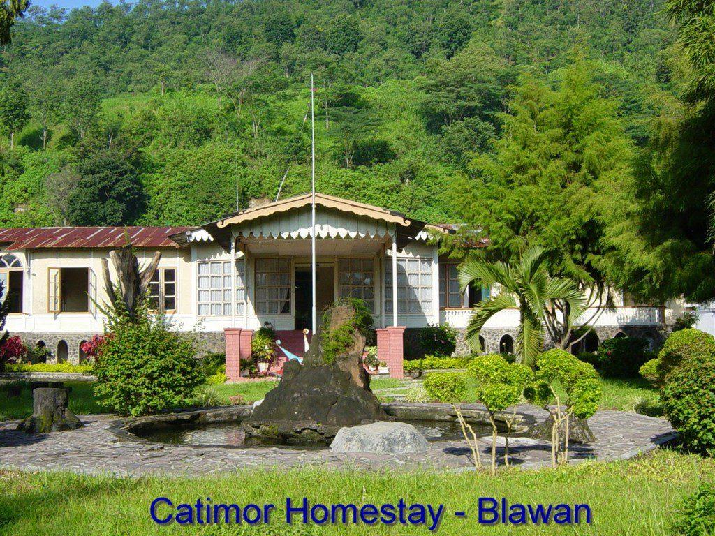 Catimor_Homestay_Blawan