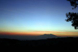 jalur pendakian Gunung Wilis