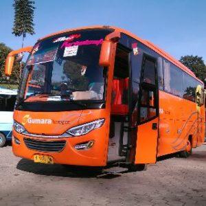 Sewa Bus Pariwisata Tulung Agung