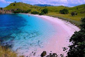 Pasir Pantai Pink